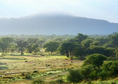 Kassandara-view-DSC00792