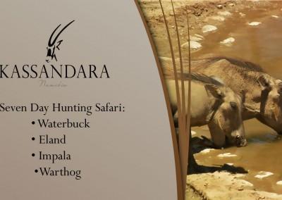 Kassandara Hunting Package 2015: Waterbuck, Eland, Impala, Warthog