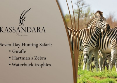 Kassandara Hunting Package 2015: Giraffe, Hartman's Zebra and Waterbuck