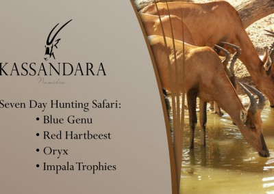 Kassandara Hunting Package 2015: Blue Genu, Red Hartebeest, Oryx, Impala